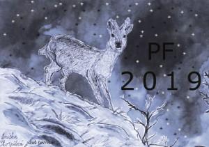 pf_2019