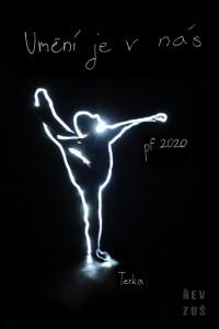pf 2020 zus rev (7)